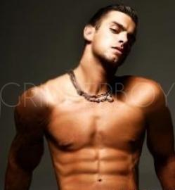 gay top escort boy escort torino