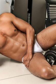 escort boy parma gay pescara